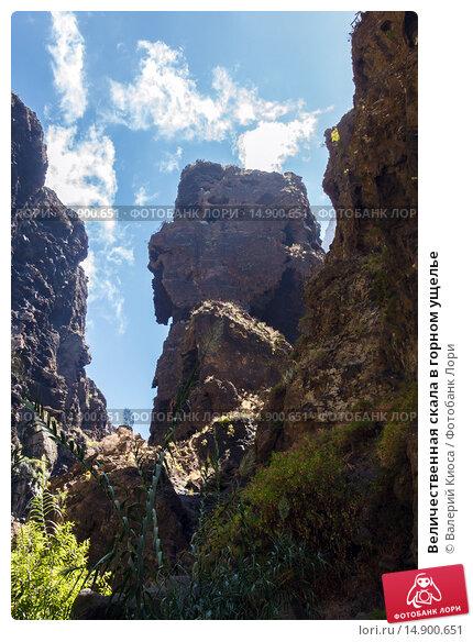 Купить «Величественная скала в горном ущелье», фото № 14900651, снято 11 сентября 2015 г. (c) Валерий Киоса / Фотобанк Лори