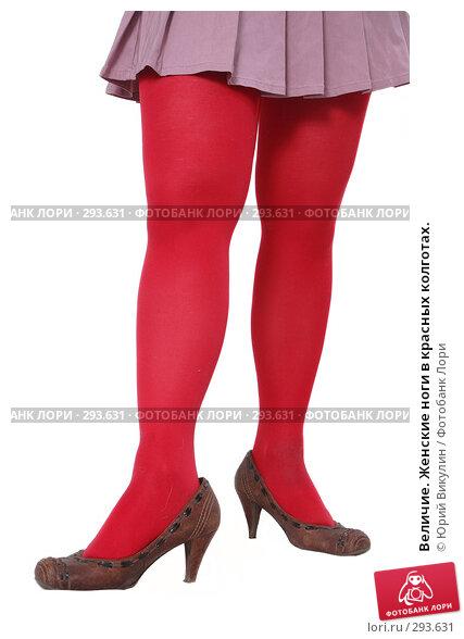 Величие. Женские ноги в красных колготах., фото № 293631, снято 4 мая 2008 г. (c) Юрий Викулин / Фотобанк Лори