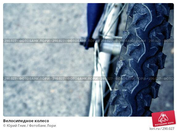 Велосипедное колесо, фото № 290027, снято 17 мая 2008 г. (c) Юрий Гник / Фотобанк Лори