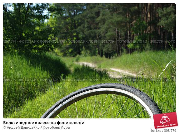 Велосипедное колесо на фоне зелени, фото № 308779, снято 1 июня 2008 г. (c) Андрей Давиденко / Фотобанк Лори
