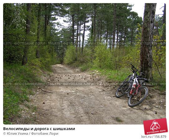 Велосипеды и дорога с шишками, фото № 156879, снято 5 апреля 2005 г. (c) Юлия Ухина / Фотобанк Лори