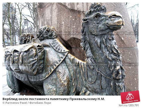 Верблюд около постамента памятнику Пржевальскому Н.М., фото № 203791, снято 6 февраля 2008 г. (c) Parmenov Pavel / Фотобанк Лори