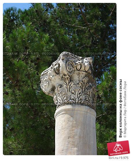 Купить «Верх колонны на фоне сосны», фото № 9975, снято 18 декабря 2017 г. (c) Маргарита Лир / Фотобанк Лори