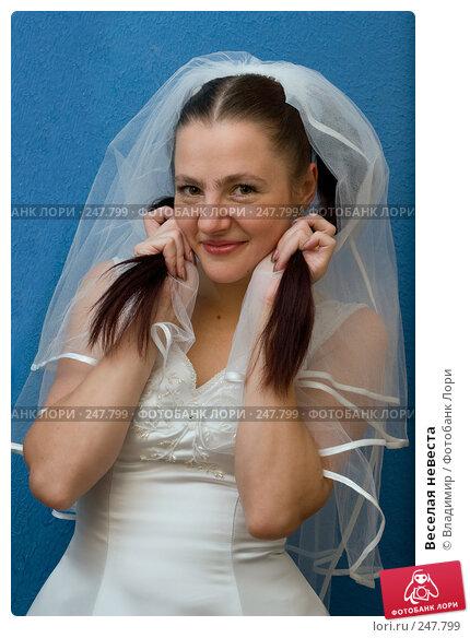 Купить «Веселая невеста», фото № 247799, снято 13 декабря 2007 г. (c) Владимир / Фотобанк Лори