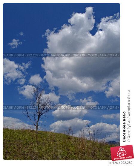 Весеннее небо, фото № 292239, снято 15 мая 2008 г. (c) Олег Рубик / Фотобанк Лори