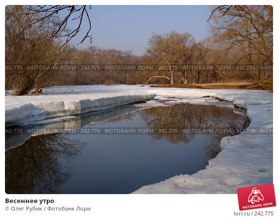 Весеннее утро, фото № 242775, снято 27 марта 2008 г. (c) Олег Рубик / Фотобанк Лори