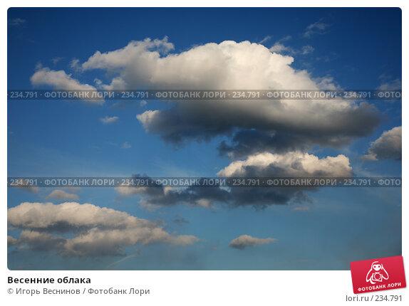 Купить «Весенние облака», фото № 234791, снято 27 марта 2008 г. (c) Игорь Веснинов / Фотобанк Лори