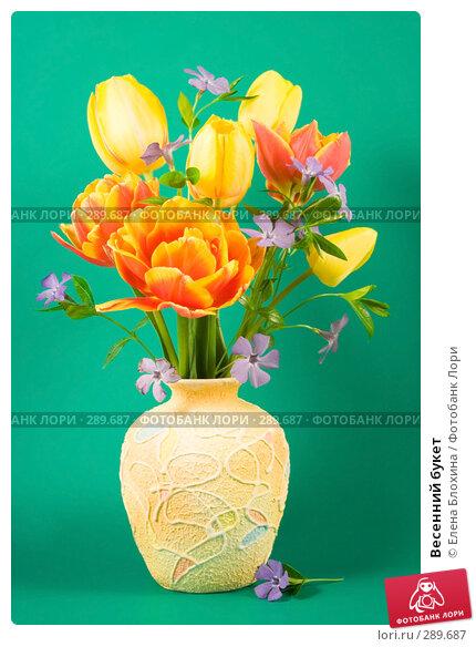 Весенний букет, фото № 289687, снято 18 мая 2008 г. (c) Елена Блохина / Фотобанк Лори