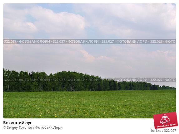 Весенний луг, фото № 322027, снято 11 мая 2008 г. (c) Sergey Toronto / Фотобанк Лори