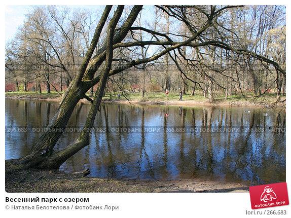 Весенний парк с озером, фото № 266683, снято 26 апреля 2008 г. (c) Наталья Белотелова / Фотобанк Лори