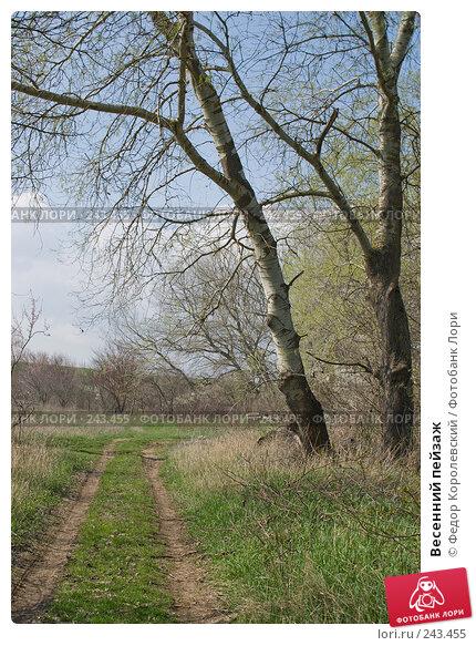 Весенний пейзаж, фото № 243455, снято 4 апреля 2008 г. (c) Федор Королевский / Фотобанк Лори