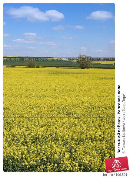 Купить «Весенний пейзаж. Рапсовое поле.», фото № 106591, снято 18 апреля 2007 г. (c) Tamara Kulikova / Фотобанк Лори