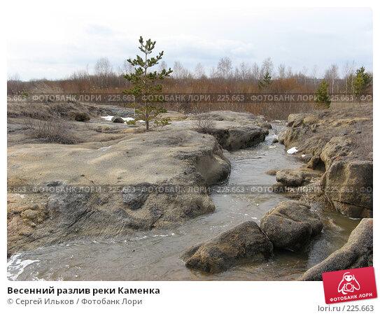 Весенний разлив реки Каменка, фото № 225663, снято 8 апреля 2007 г. (c) Сергей Ильков / Фотобанк Лори