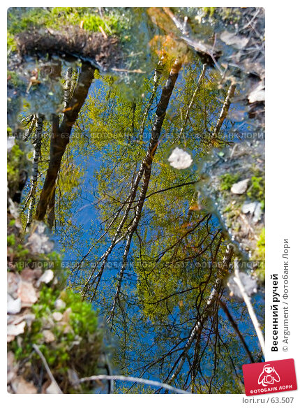 Купить «Весенний ручей», фото № 63507, снято 18 мая 2006 г. (c) Argument / Фотобанк Лори