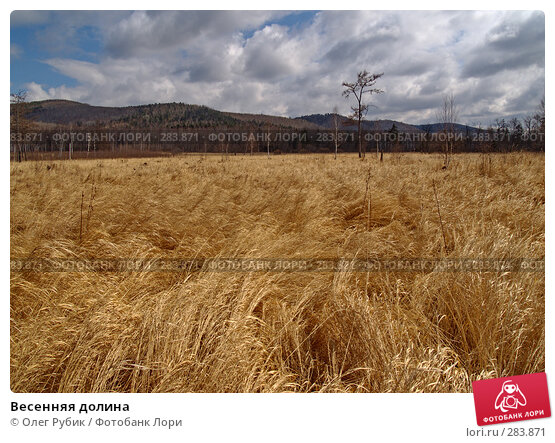 Весенняя долина, фото № 283871, снято 29 марта 2008 г. (c) Олег Рубик / Фотобанк Лори