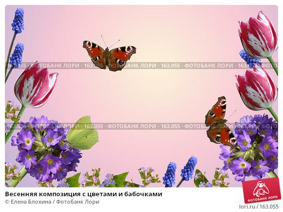 Весенняя композиция с цветами и бабочками, фото № 163055, снято 21 февраля 2017 г. (c) Елена Блохина / Фотобанк Лори