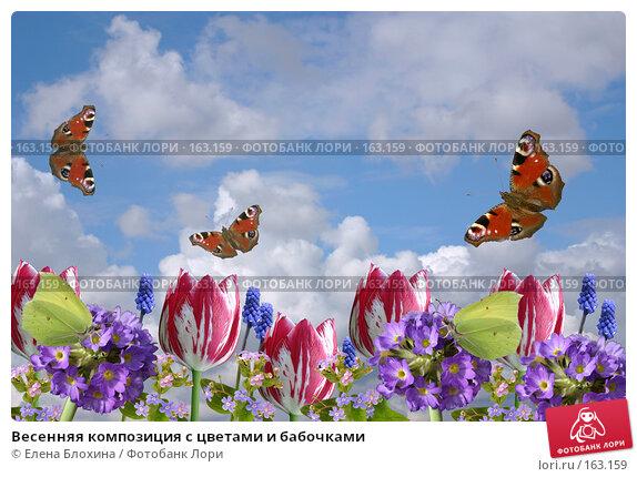 Купить «Весенняя композиция с цветами и бабочками», фото № 163159, снято 24 апреля 2007 г. (c) Елена Блохина / Фотобанк Лори