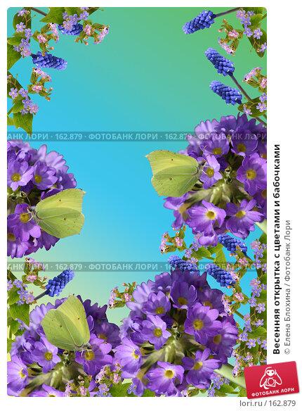 Весенняя открытка с цветами и бабочками, фото № 162879, снято 22 октября 2016 г. (c) Елена Блохина / Фотобанк Лори