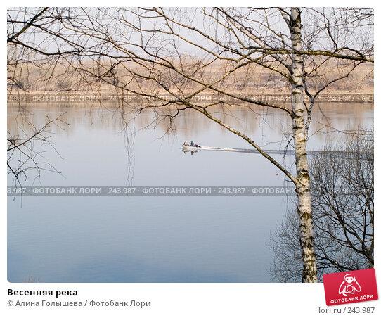 Весенняя река, эксклюзивное фото № 243987, снято 6 апреля 2008 г. (c) Алина Голышева / Фотобанк Лори