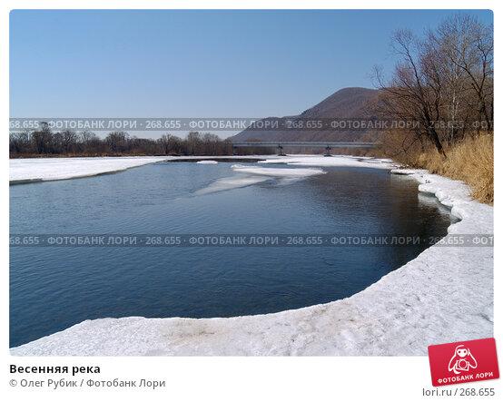 Купить «Весенняя река», фото № 268655, снято 20 марта 2008 г. (c) Олег Рубик / Фотобанк Лори