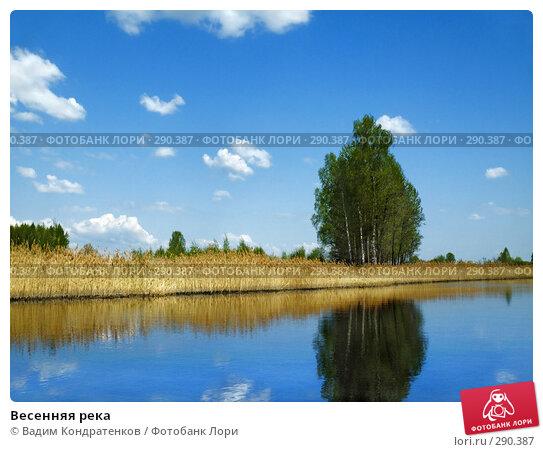 Весенняя река, фото № 290387, снято 3 декабря 2016 г. (c) Вадим Кондратенков / Фотобанк Лори