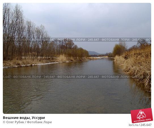 Вешние воды, Уссури, фото № 245647, снято 6 апреля 2008 г. (c) Олег Рубик / Фотобанк Лори