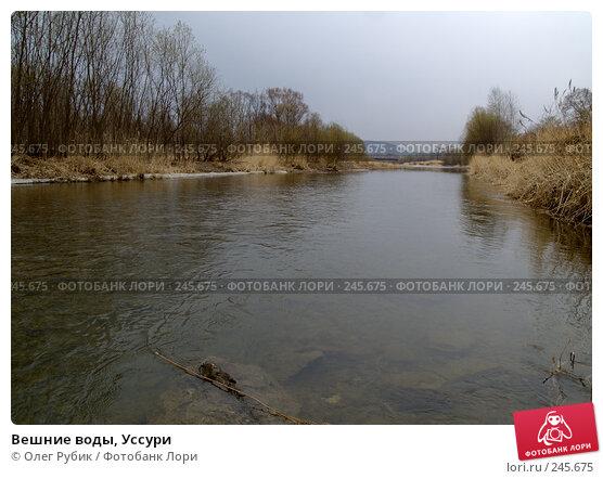Вешние воды, Уссури, фото № 245675, снято 6 апреля 2008 г. (c) Олег Рубик / Фотобанк Лори