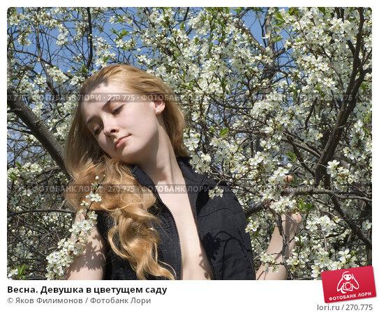 Купить «Весна. Девушка в цветущем саду», фото № 270775, снято 1 мая 2008 г. (c) Яков Филимонов / Фотобанк Лори