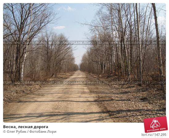 Весна, лесная дорога, фото № 147295, снято 29 апреля 2007 г. (c) Олег Рубик / Фотобанк Лори