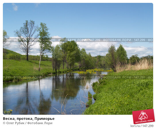 Весна, протока, Приморье, фото № 147299, снято 27 мая 2007 г. (c) Олег Рубик / Фотобанк Лори