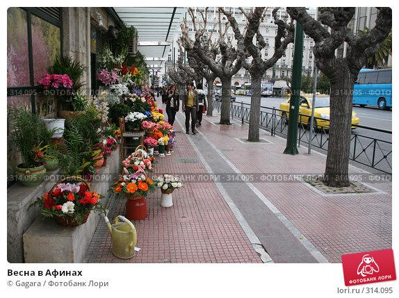 Весна в Афинах, фото № 314095, снято 11 марта 2008 г. (c) Gagara / Фотобанк Лори