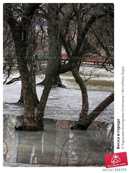 Весна в городе, фото № 224515, снято 23 февраля 2008 г. (c) Карасева Екатерина Олеговна / Фотобанк Лори