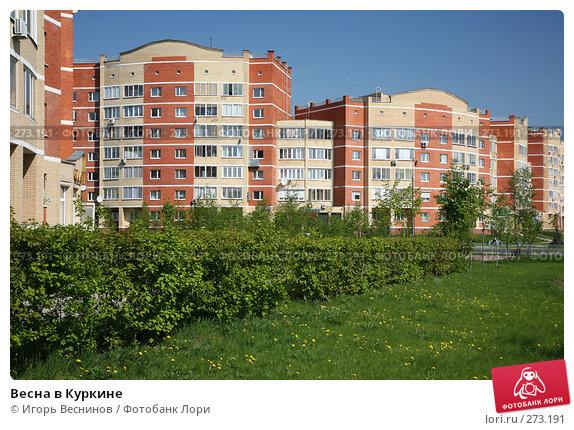 Весна в Куркине, эксклюзивное фото № 273191, снято 4 мая 2008 г. (c) Игорь Веснинов / Фотобанк Лори