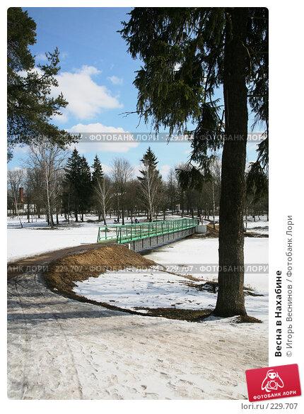 Весна в Нахабине, фото № 229707, снято 22 марта 2008 г. (c) Игорь Веснинов / Фотобанк Лори