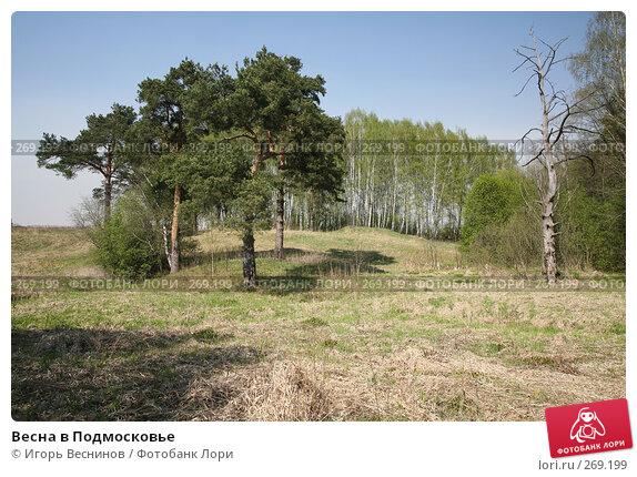 Весна в Подмосковье, фото № 269199, снято 29 апреля 2008 г. (c) Игорь Веснинов / Фотобанк Лори