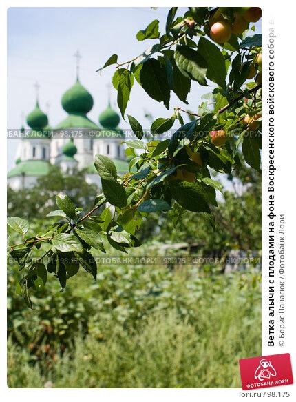 Ветка алычи с плодами на фоне Воскресенского войскового собора в Старочеркасске, фото № 98175, снято 28 июля 2007 г. (c) Борис Панасюк / Фотобанк Лори