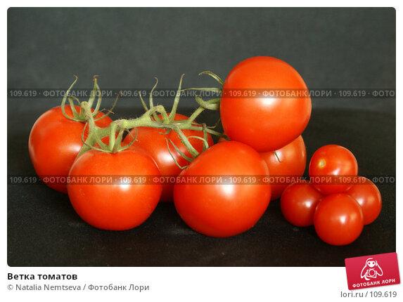 Ветка томатов, эксклюзивное фото № 109619, снято 30 октября 2007 г. (c) Natalia Nemtseva / Фотобанк Лори