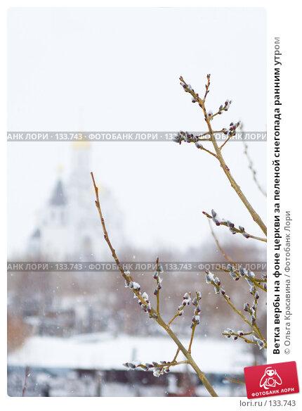 Ветка вербы на фоне церкви за пеленой снегопада ранним утром, фото № 133743, снято 29 апреля 2007 г. (c) Ольга Красавина / Фотобанк Лори