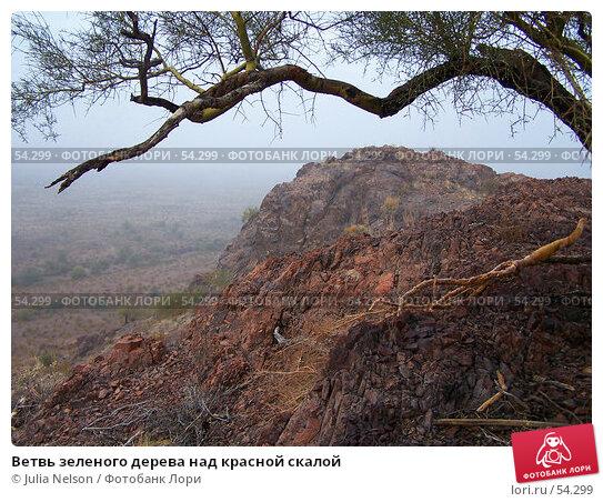 Ветвь зеленого дерева над красной скалой, фото № 54299, снято 20 января 2007 г. (c) Julia Nelson / Фотобанк Лори