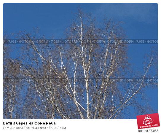 Купить «Ветви берез на фоне неба», фото № 7055, снято 3 марта 2006 г. (c) Минакова Татьяна / Фотобанк Лори