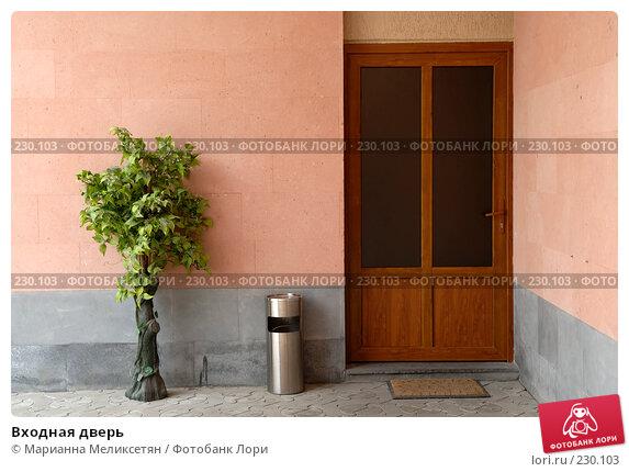 Купить «Входная дверь», фото № 230103, снято 21 марта 2018 г. (c) Марианна Меликсетян / Фотобанк Лори