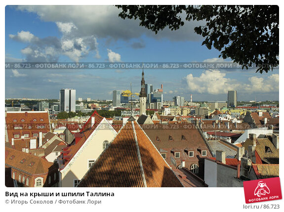 Вид на крыши и шпили Таллина, фото № 86723, снято 24 января 2017 г. (c) Игорь Соколов / Фотобанк Лори