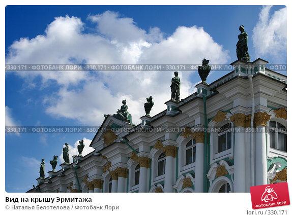Вид на крышу Эрмитажа, фото № 330171, снято 21 июня 2008 г. (c) Наталья Белотелова / Фотобанк Лори