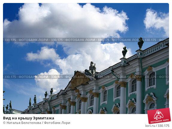 Вид на крышу Эрмитажа, фото № 330175, снято 21 июня 2008 г. (c) Наталья Белотелова / Фотобанк Лори