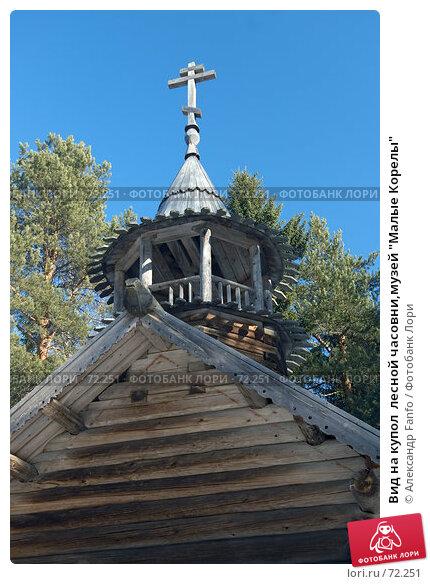 "Вид на купол  лесной часовни,музей ""Малые Корелы"", фото № 72251, снято 23 марта 2007 г. (c) Александр Fanfo / Фотобанк Лори"