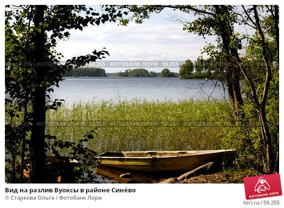 Вид на разлив Вуоксы в районе Синёво, фото № 59255, снято 28 июня 2007 г. (c) Старкова Ольга / Фотобанк Лори