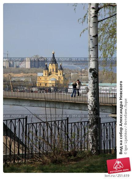 Вид на собор Александра Невского, фото № 251619, снято 13 апреля 2008 г. (c) Igor Lijashkov / Фотобанк Лори