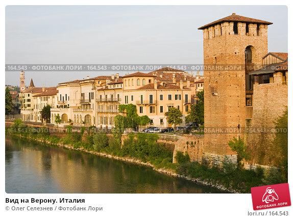 Вид на Верону. Италия, фото № 164543, снято 7 мая 2007 г. (c) Олег Селезнев / Фотобанк Лори