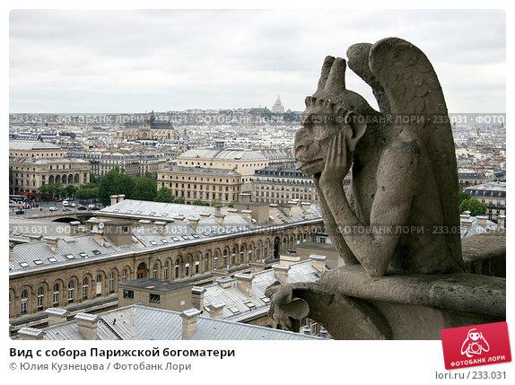 Вид с собора Парижской богоматери, фото № 233031, снято 7 мая 2007 г. (c) Юлия Кузнецова / Фотобанк Лори
