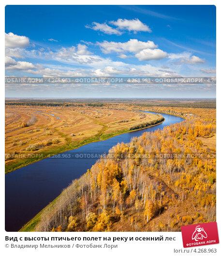 Вид с высоты птичьего полет на реку и осенний лес, фото № 4268963, снято 15 сентября 2011 г. (c) Владимир Мельников / Фотобанк Лори